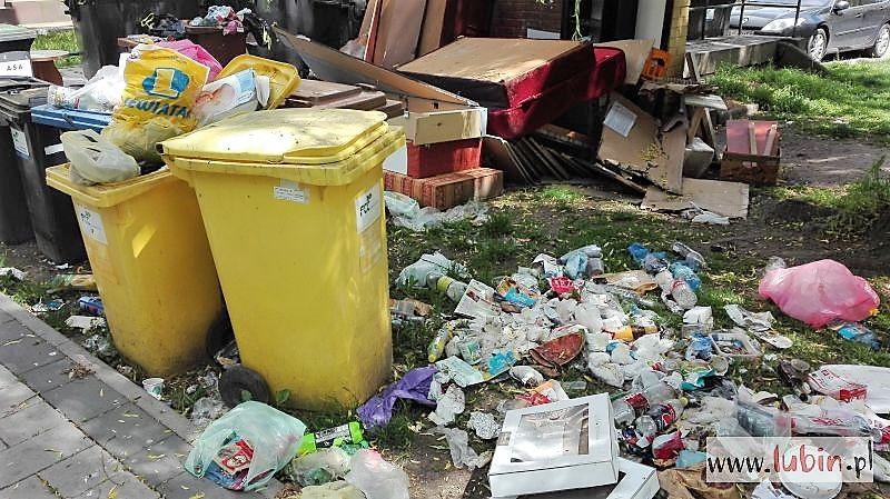 Wyższe stawki opłat za śmieci. O ile i dla kogo?