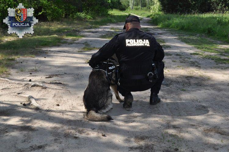 Lubiński policjant i jego pies pomogli zatrzymać dilera