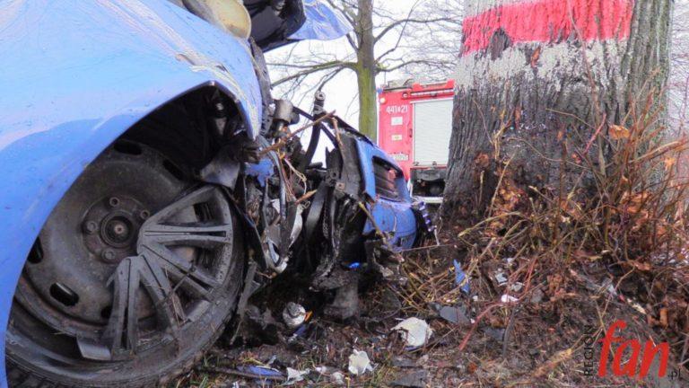 Audi uderzyło w drzewo. Poszkodowany w szpitalu (FOTO, WIDEO)