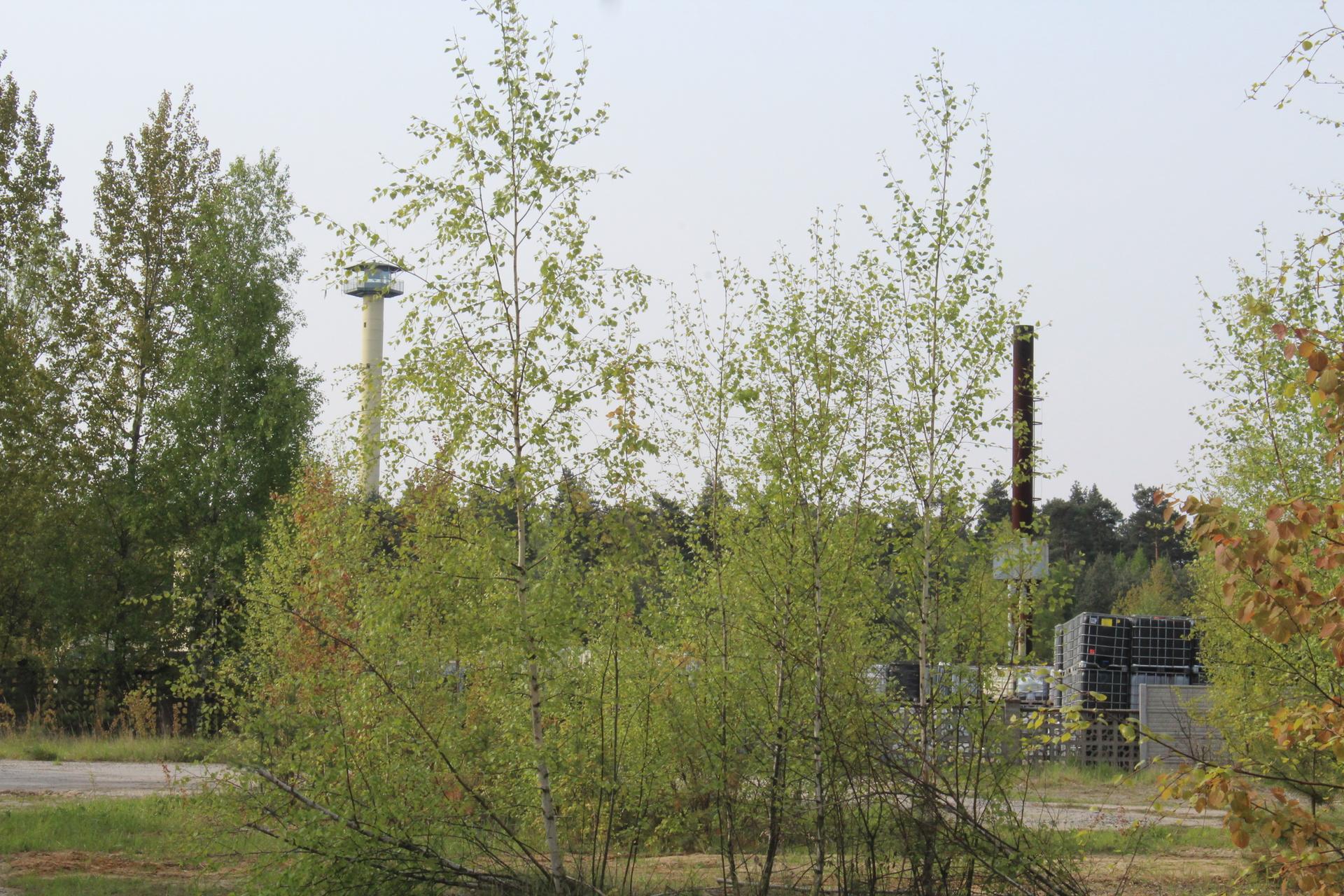 Zarzut za nielegalne odpady koło Jakubowa (WIDEO)