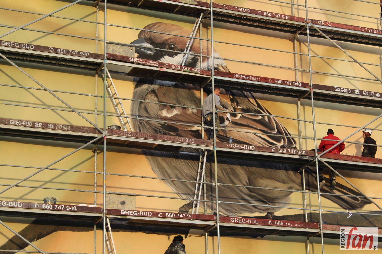 Rośnie kolekcja ptasich murali