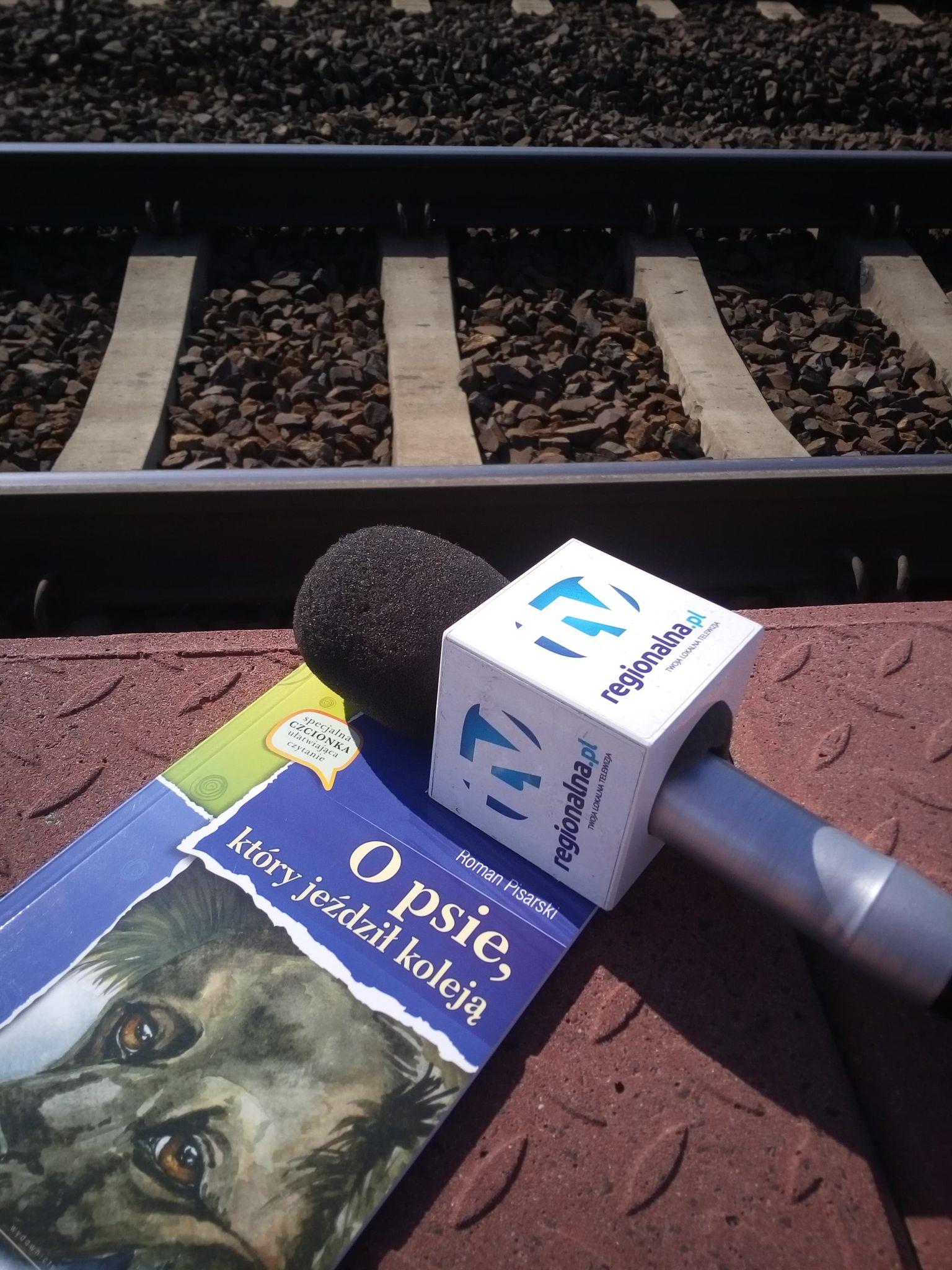O psie, który pojechał pociągiem (WIDEO)