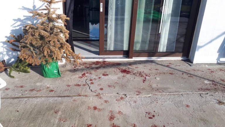 Policjanci zabili psa, drugiego ciężko zranili