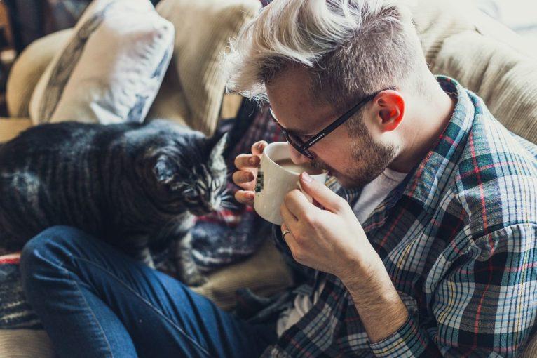 Kocia kawiarnia prosi o pomoc