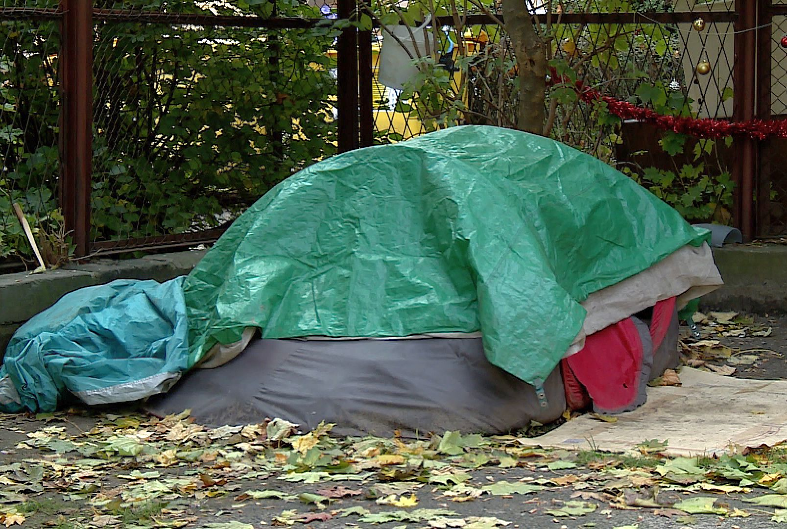 Namiot bezdomnego stoi w centrum miasta (WIDEO)