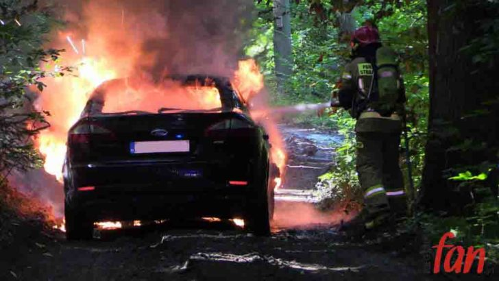 Ford w ogniu w środku lasu (FOTO, WIDEO)