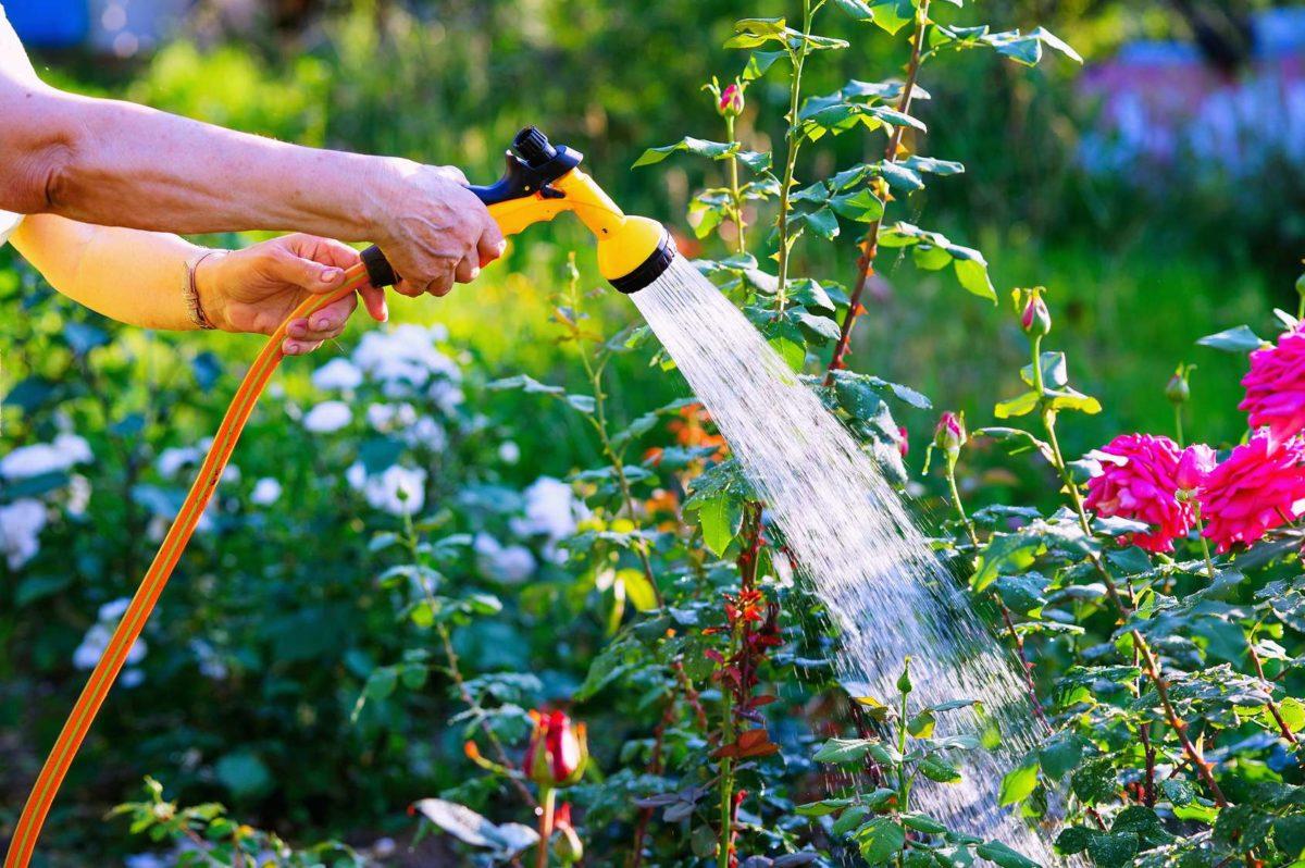 Wójt apeluje do mieszkańców o oszczędzanie wody