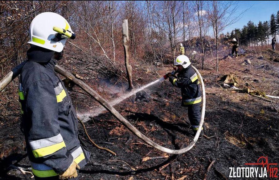 Samoloty gasiły pożar na Okolu