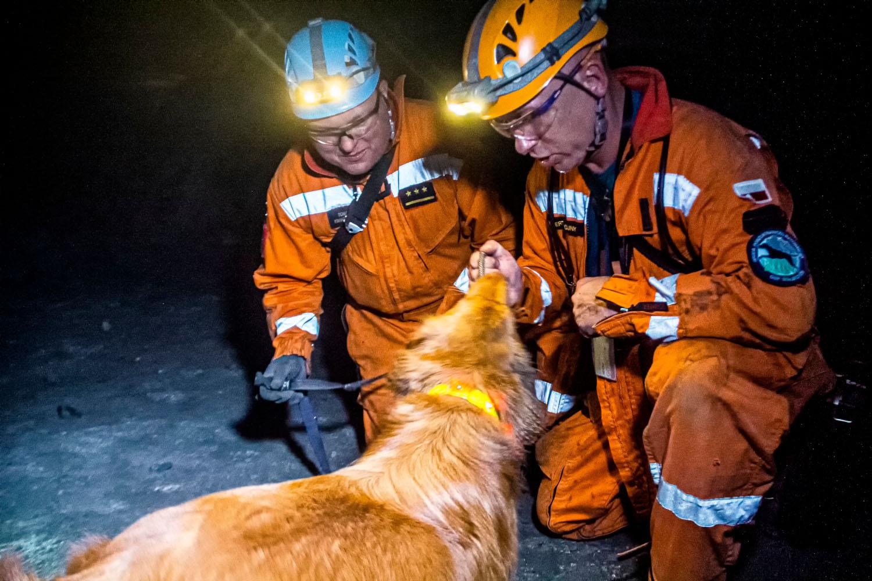 Psy będą szukać ludzi pod ziemią?