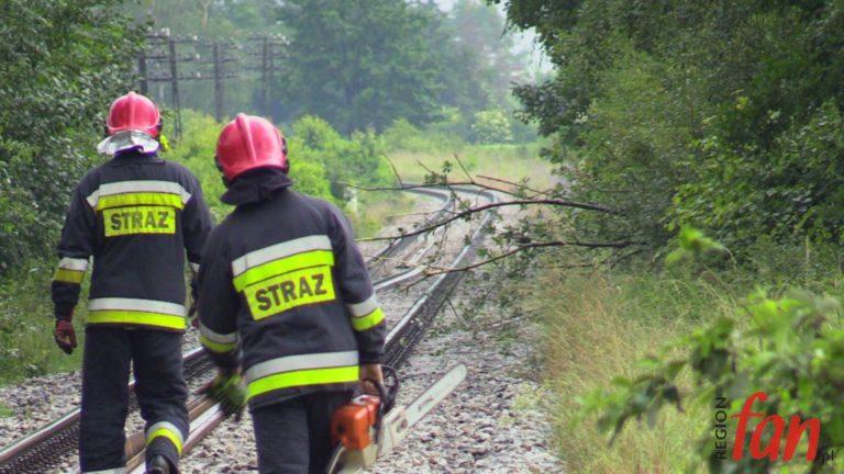 Na kłopoty – strażacy (FOTO)